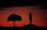 WWF / Fritz POLKING