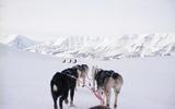(c) WWF-Canon / Tanya Petersen