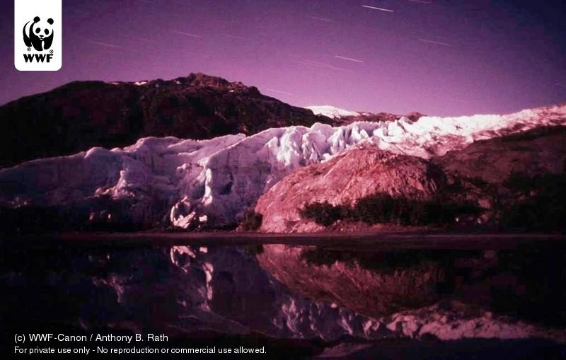 (c) WWF-Canon / Anthony B. Rath