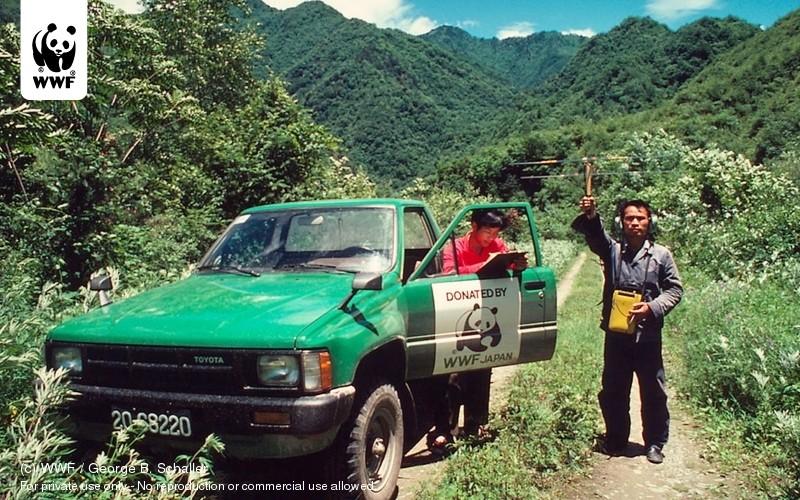 (c) WWF / George B. Schaller